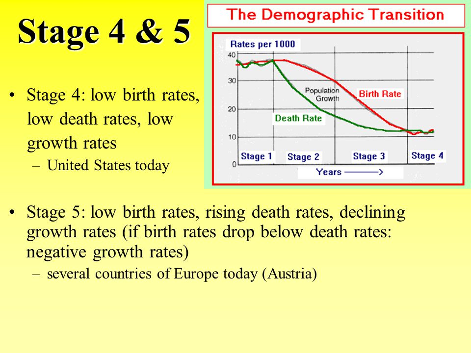 Stage 4 & 5 Stage 4: low birth rates, low death rates, low growth rates –United States today Stage 5: low birth rates, rising death rates, declining g