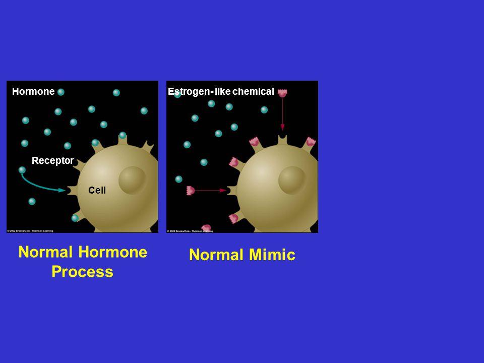 Hormone Receptor Cell Normal Hormone Process Normal Mimic Hormone Blocker Estrogen- like chemicalAntiandrogen chemical