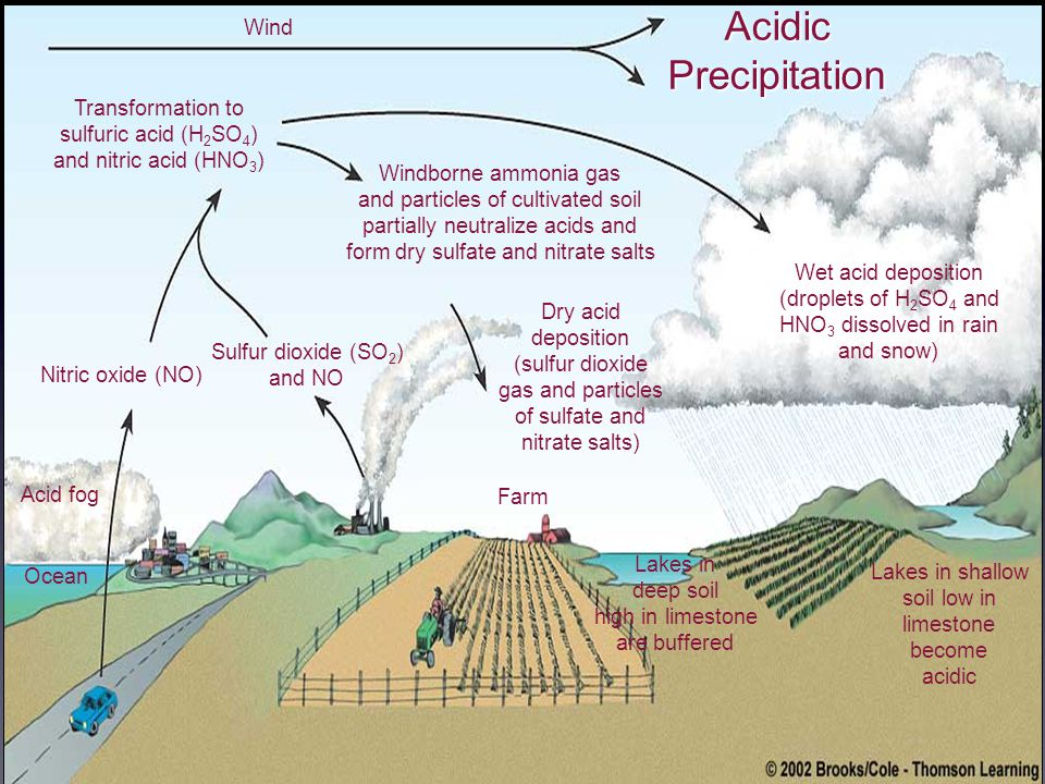 Wind Transformation to sulfuric acid (H 2 SO 4 ) and nitric acid (HNO 3 ) Nitric oxide (NO) Acid fog Ocean Sulfur dioxide (SO 2 ) and NO Windborne ammonia gas and particles of cultivated soil partially neutralize acids and form dry sulfate and nitrate salts Dry acid deposition (sulfur dioxide gas and particles of sulfate and nitrate salts) Farm Lakes in deep soil high in limestone are buffered Lakes in shallow soil low in limestone become acidic Wet acid deposition (droplets of H 2 SO 4 and HNO 3 dissolved in rain and snow) AcidicPrecipitation