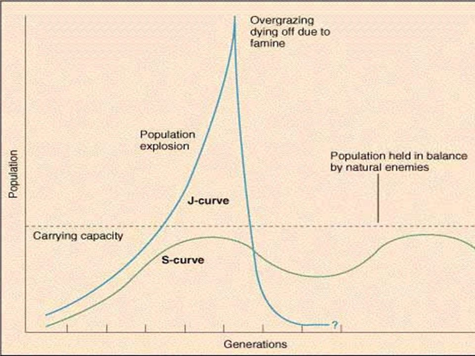 Logistic Growth Because of Environmental Resistance, population growth decreases as density reaches carrying capacity Graph of individuals vs.