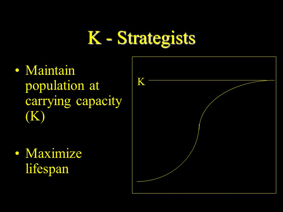 R Strategists Many small offspring Little or no parental care and protection of offspring Early reproductive age Most offspring die before reaching reproductive age Small adults Adapted to unstable climate and environmental conditions High population growth rate – (r) Population size fluctuates wildly above and below carrying capacity – (K) Generalist niche Low ability to compete Early successional species