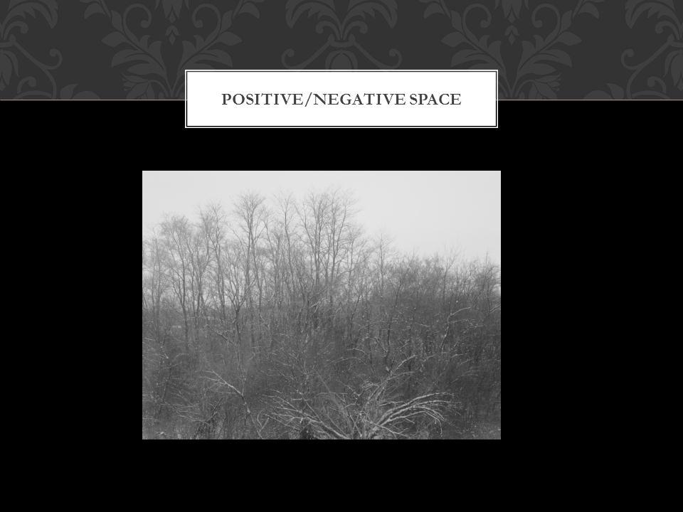 POSITIVE/NEGATIVE SPACE