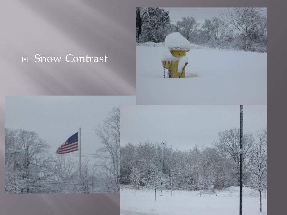  Snow Contrast