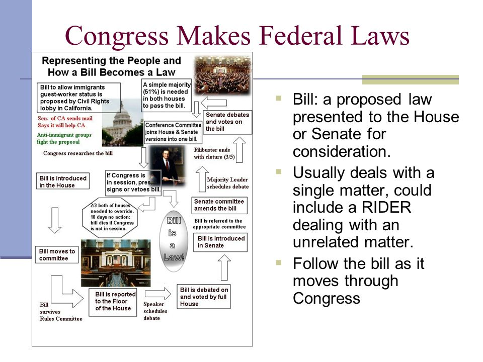 Congress Makes Federal Laws  Bill: a proposed law presented to the House or Senate for consideration.  Usually deals with a single matter, could inc