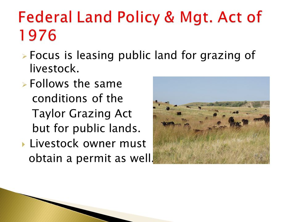  Focus is leasing public land for grazing of livestock.
