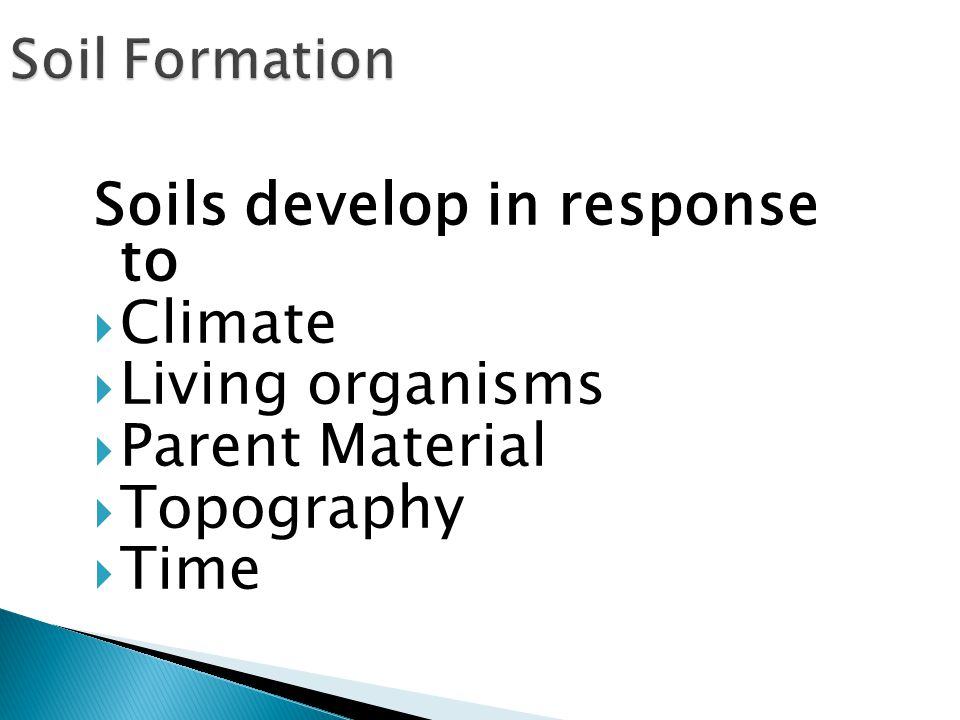 Soils develop in response to  Climate  Living organisms  Parent Material  Topography  Time