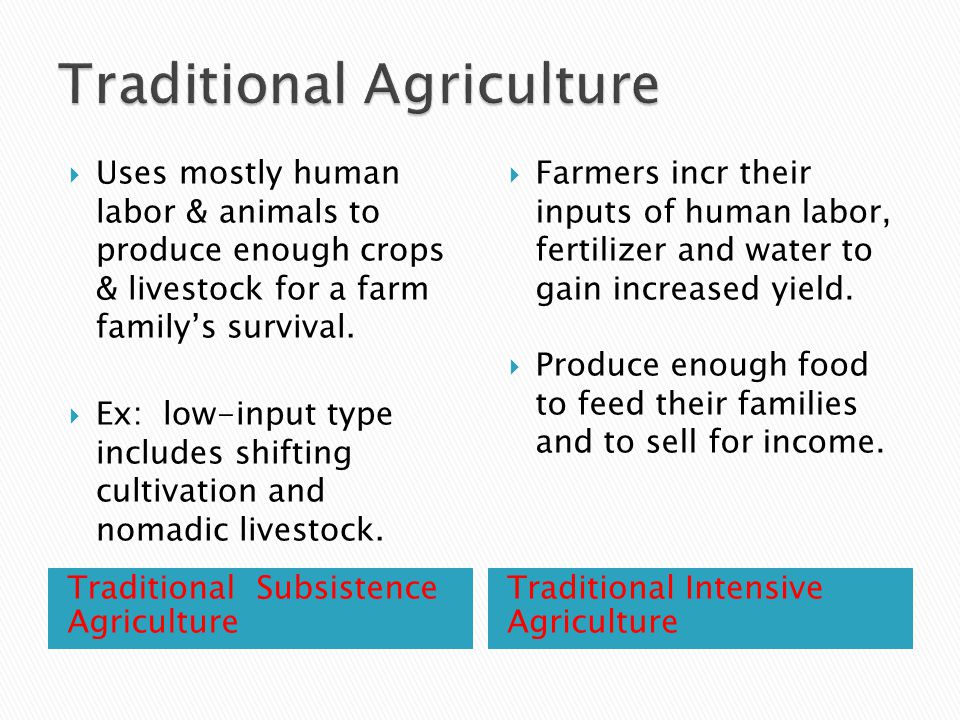 Traditional Subsistence Agriculture Traditional Intensive Agriculture  Uses mostly human labor & animals to produce enough crops & livestock for a farm family's survival.