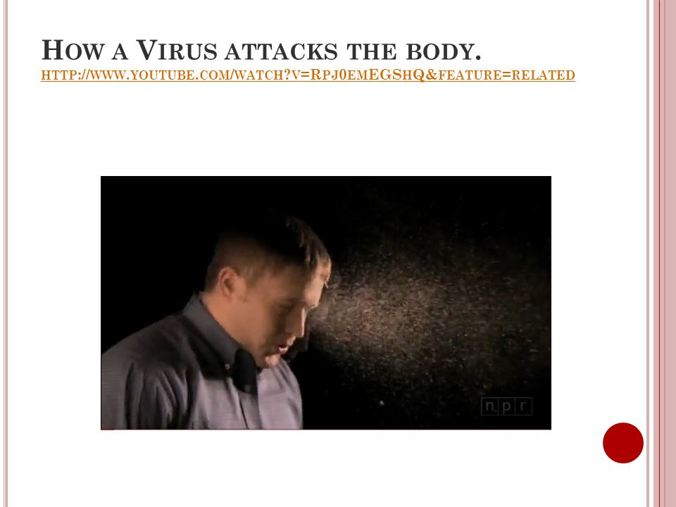 H OW A V IRUS ATTACKS THE BODY. HTTP :// WWW. YOUTUBE. COM / WATCH ? V =R PJ 0 EM EGS H Q& FEATURE = RELATED HTTP :// WWW. YOUTUBE. COM / WATCH ? V =R
