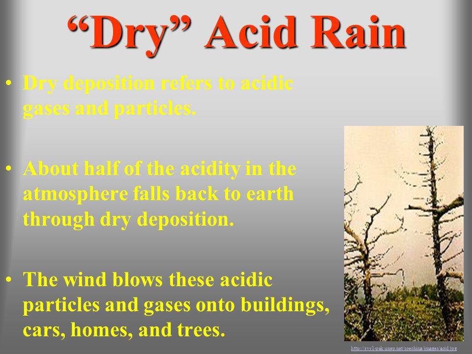 """""""Dry"""" Acid Rain Dry deposition refers to acidic gases and particles. About half of the acidity in the atmosphere falls back to earth through dry depos"""