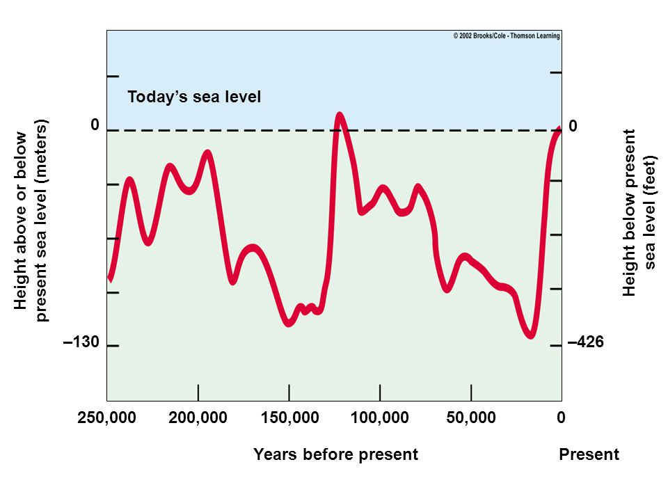 Today's sea level Years before presentPresent 250,000200,000150,000100,00050,0000 –130 0 –426 0 Height above or below present sea level (meters) Heigh