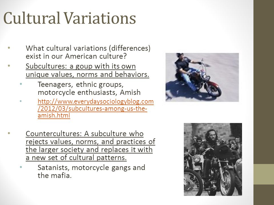 Cultural Variations What cultural variations (differences) exist in our American culture? Subcultures: a goup with its own unique values, norms and be