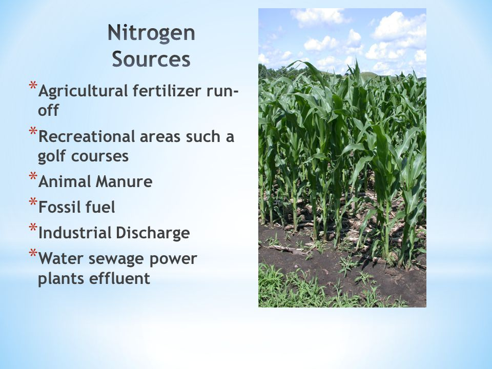 * Agricultural fertilizer run- off * Recreational areas such a golf courses * Animal Manure * Fossil fuel * Industrial Discharge * Water sewage power plants effluent