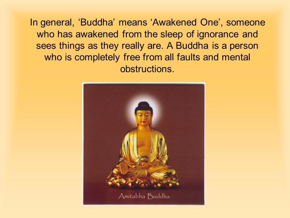 In general, 'Buddha' means 'Awakened One', someone who has awakened from the sleep of ignorance and sees things as they really are.