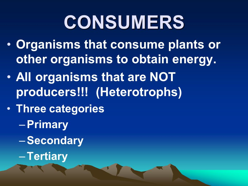 CONSUMERS Organisms that consume plants or other organisms to obtain energy. All organisms that are NOT producers!!! (Heterotrophs) Three categories –