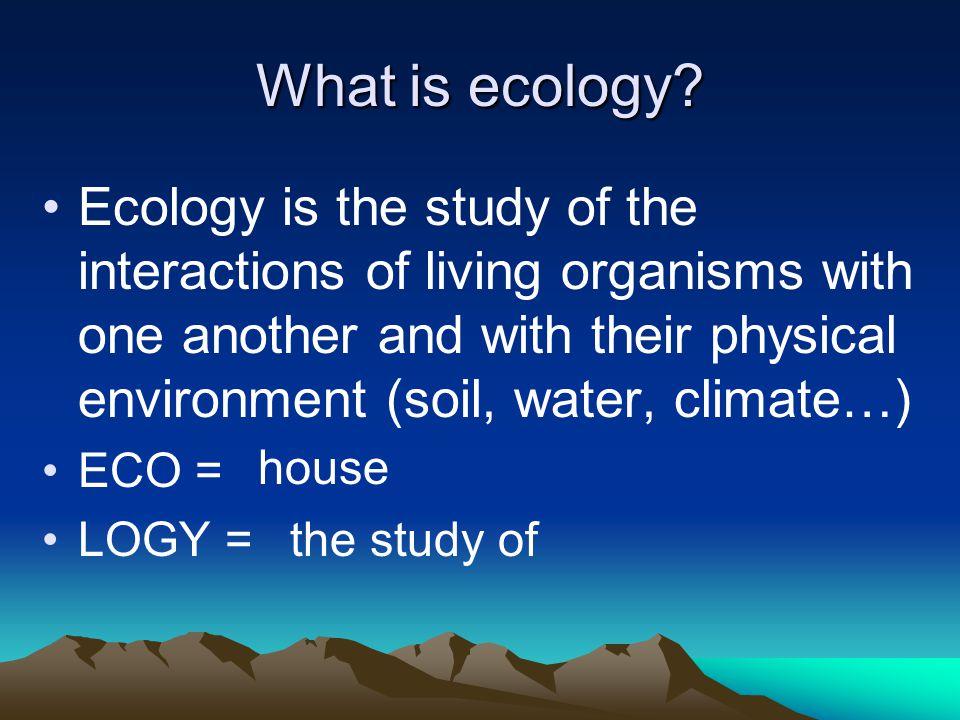 LEVELS OF ORGANIZATION Species Population Community Ecosystem Biome Biosphere
