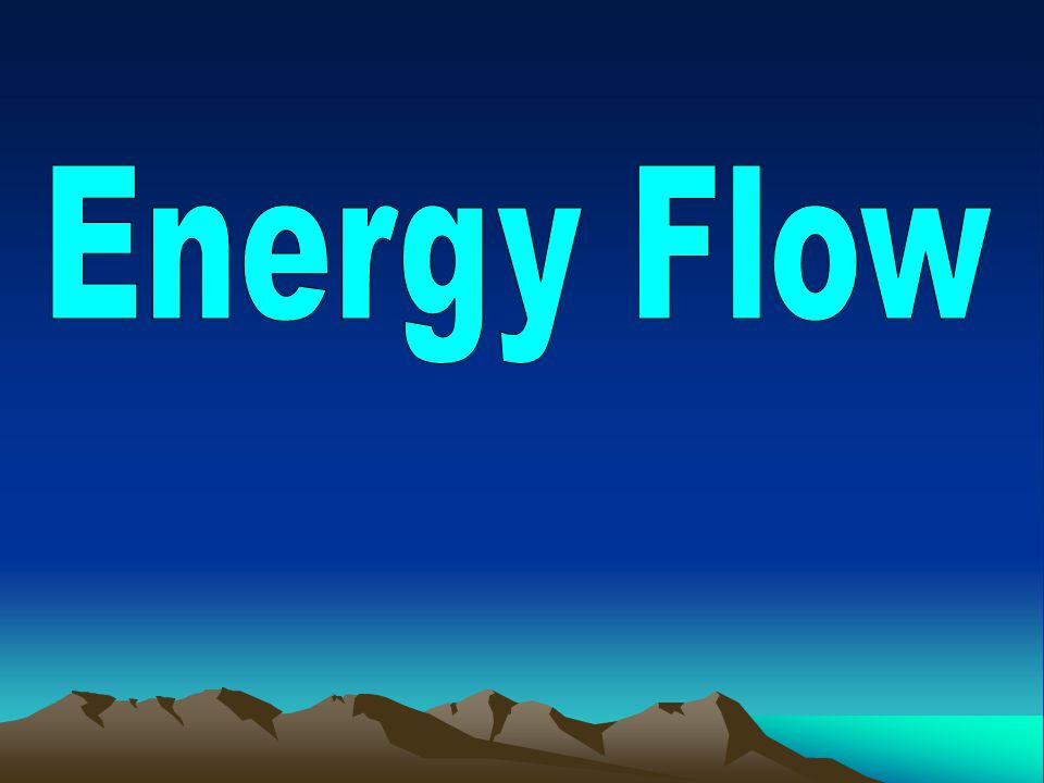 THE RULE OF TENS Only 10% of the energy in a trophic level is passed on to the next level…90% of the energy is lost—where does it go.