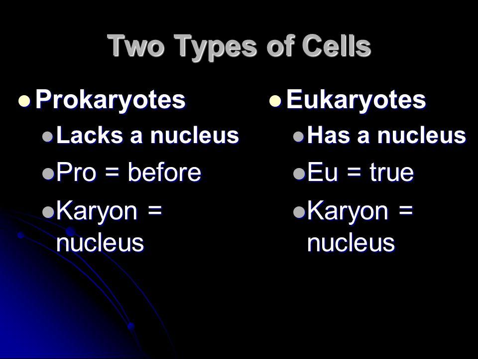 Two Types of Cells Prokaryotes Prokaryotes Lacks a nucleus Lacks a nucleus Pro = before Pro = before Karyon = nucleus Karyon = nucleus Eukaryotes Eukaryotes Has a nucleus Eu = true Karyon = nucleus