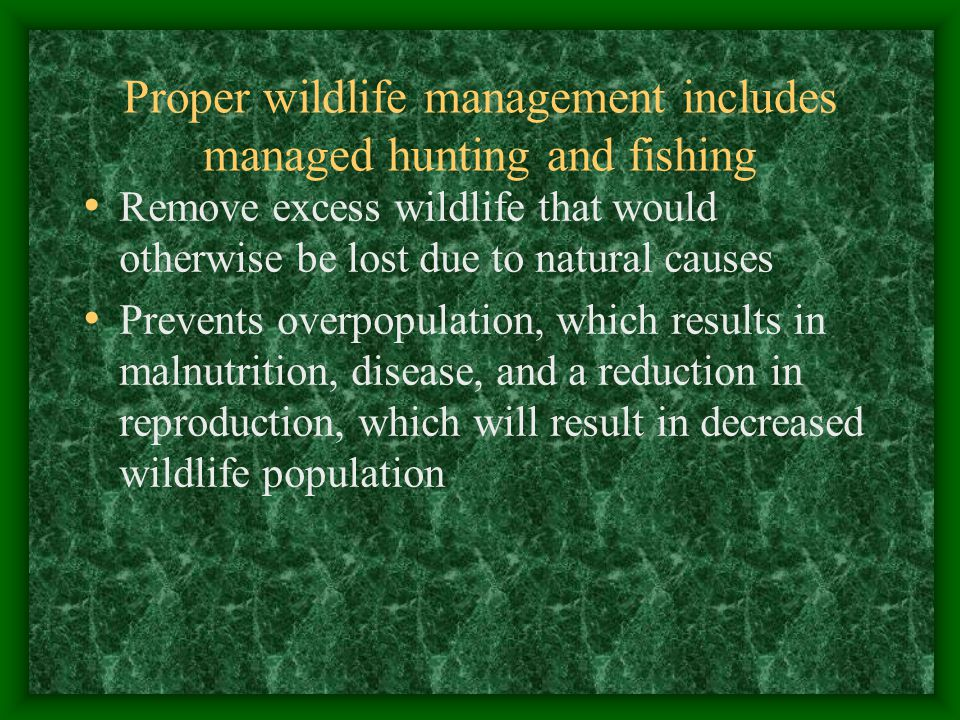 Carrying capacity The number of wildlife each habitat can support throughout the year.