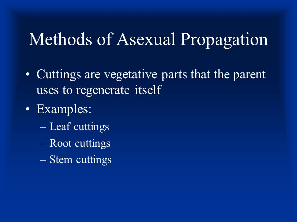Asexual Propagation Use of a part or parts of a plant for reproducing plants Also called vegetative propagation The new plant is an exact duplicate of the parent plant
