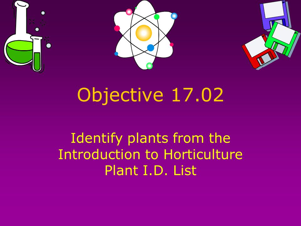 Objective 17.02 Identify plants from the Introduction to Horticulture Plant I.D. List