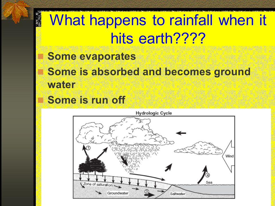 What determines if rainwater becomes runoff or groundwater.
