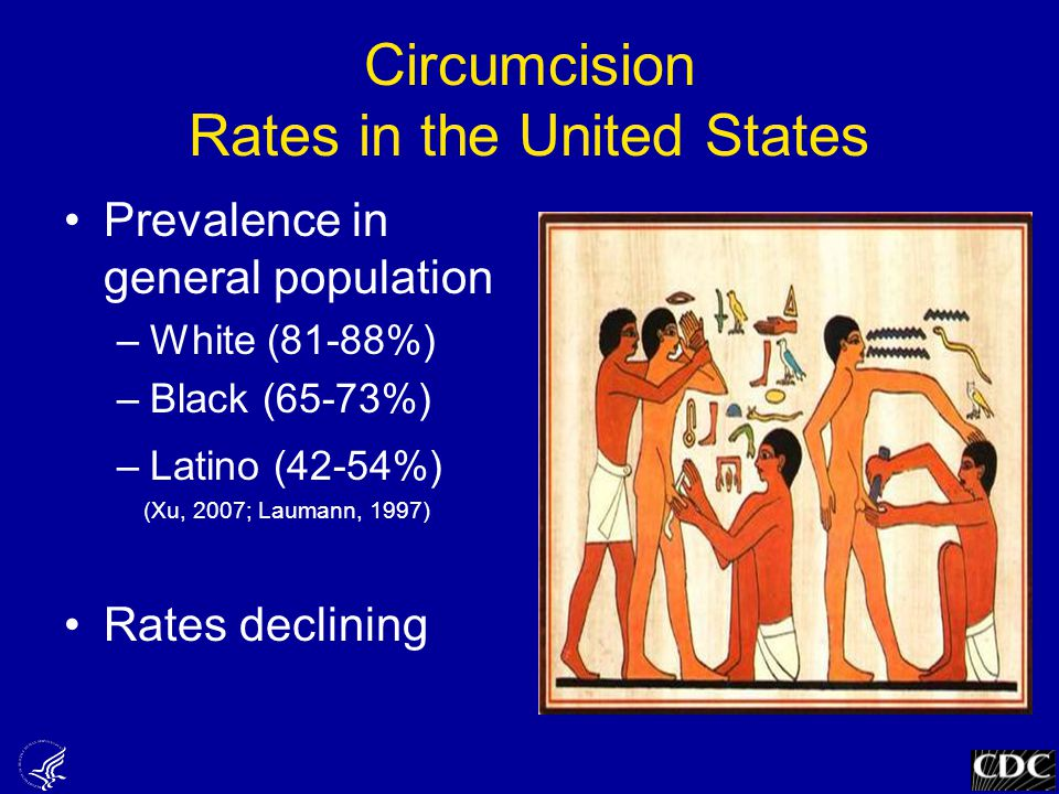 Circumcision Rates in the United States Prevalence in general population –White (81-88%) –Black (65-73%) –Latino (42-54%) (Xu, 2007; Laumann, 1997) Rates declining