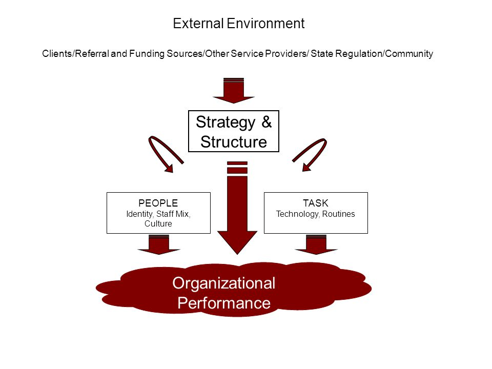 External Environment Clients/Referral and Funding Sources/Other Service Providers/ State Regulation/Community Strategy & Structure TASK Technology, Ro