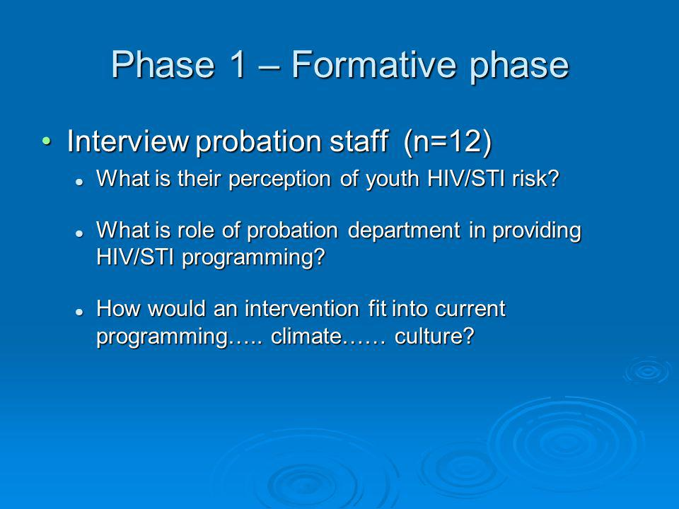 Phase 1 – Formative phase Interview probation staff (n=12)Interview probation staff (n=12) What is their perception of youth HIV/STI risk.