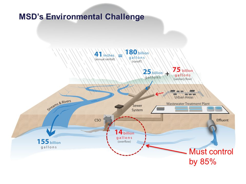 MSD's Environmental Challenge Must control by 85%