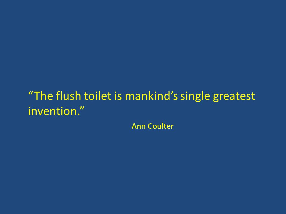 The flush toilet is mankind's single greatest invention. Ann Coulter