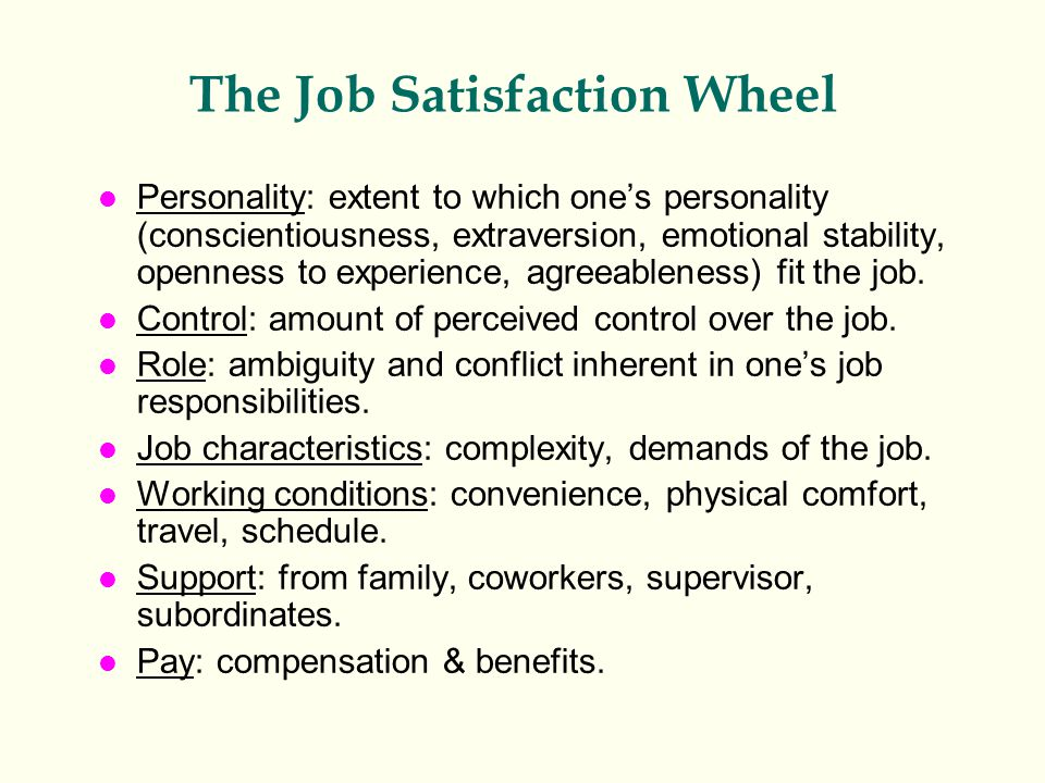 The Job Satisfaction Wheel l Personality: extent to which one's personality (conscientiousness, extraversion, emotional stability, openness to experience, agreeableness) fit the job.