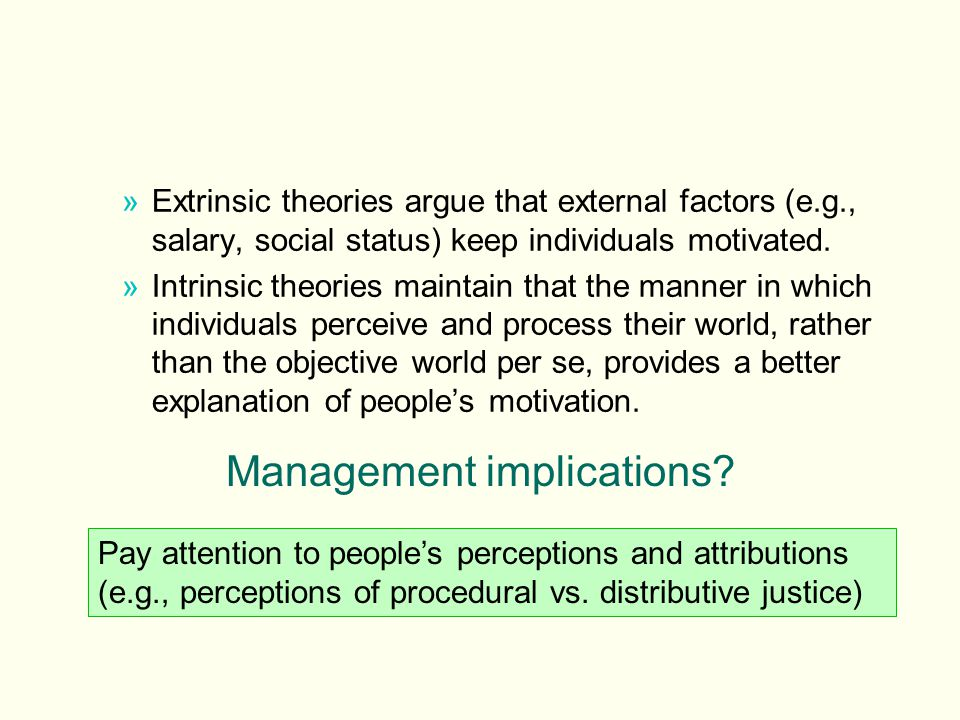 »Extrinsic theories argue that external factors (e.g., salary, social status) keep individuals motivated. »Intrinsic theories maintain that the manner
