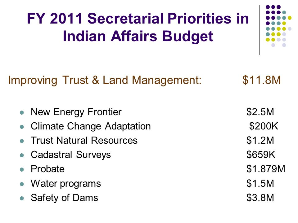 FY 2011 Secretarial Priorities in Indian Affairs Budget Improving Trust & Land Management: $11.8M New Energy Frontier $2.5M Climate Change Adaptation $200K Trust Natural Resources$1.2M Cadastral Surveys$659K Probate$1.879M Water programs$1.5M Safety of Dams$3.8M