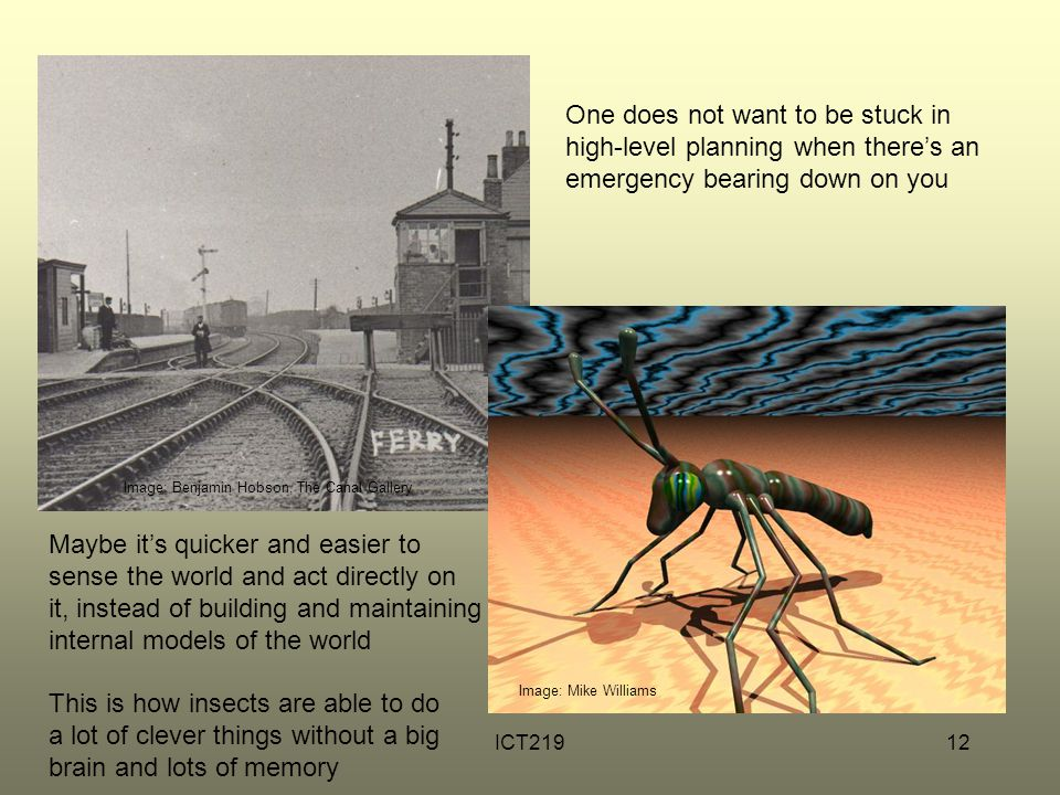 ICT21912 Image: Mike Williams One does not want to be stuck in high-level planning when there's an emergency bearing down on you Maybe it's quicker and easier to sense the world and act directly on it, instead of building and maintaining internal models of the world This is how insects are able to do a lot of clever things without a big brain and lots of memory Image: Benjamin Hobson, The Canal Gallery