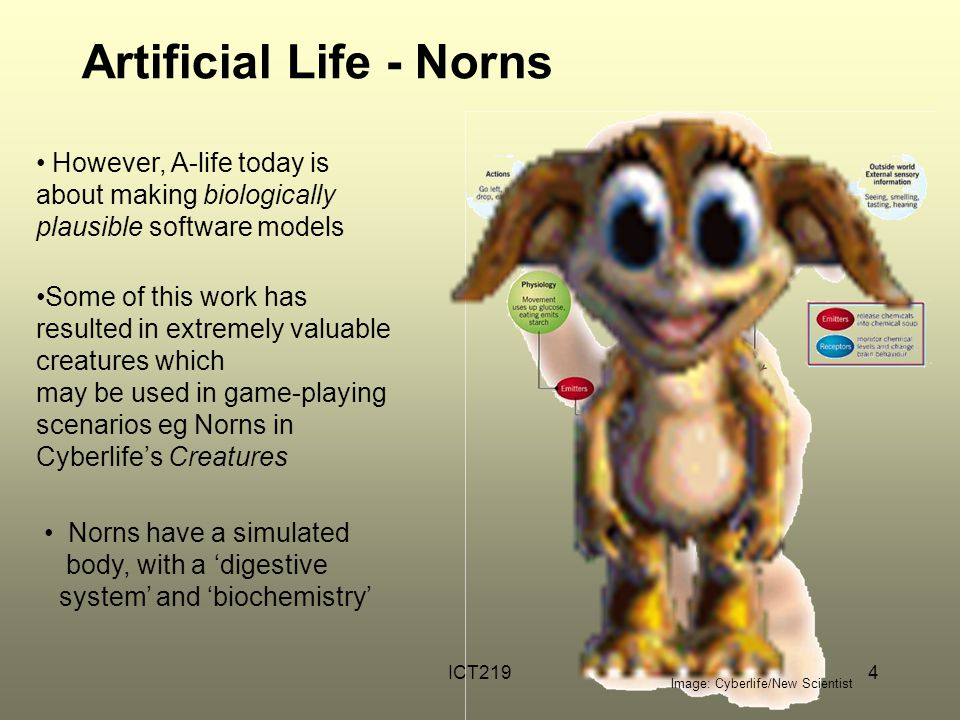 ICT2194 Artificial Life - Norns Image: Cyberlife/New Scientist However, A-life today is about making biologically plausible software models Some of this work has resulted in extremely valuable creatures which may be used in game-playing scenarios eg Norns in Cyberlife's Creatures Norns have a simulated body, with a 'digestive system' and 'biochemistry'