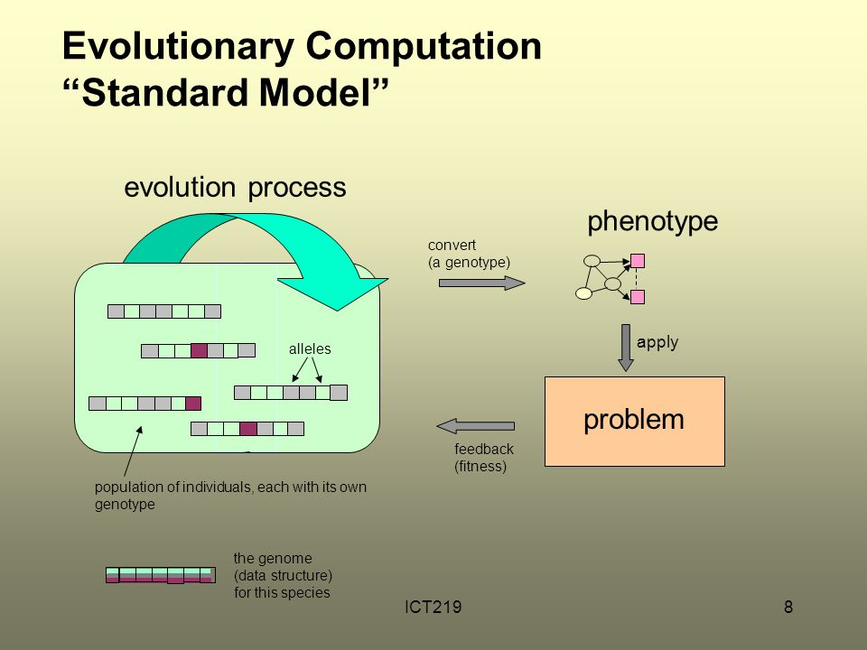 """ICT2198 Evolutionary Computation """"Standard Model"""" problem apply convert (a genotype) feedback (fitness) phenotype the genome (data structure) for this"""