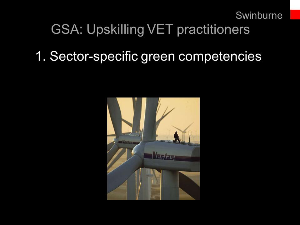 Text line Swinburne GSA: Upskilling VET practitioners 1. Sector-specific green competencies