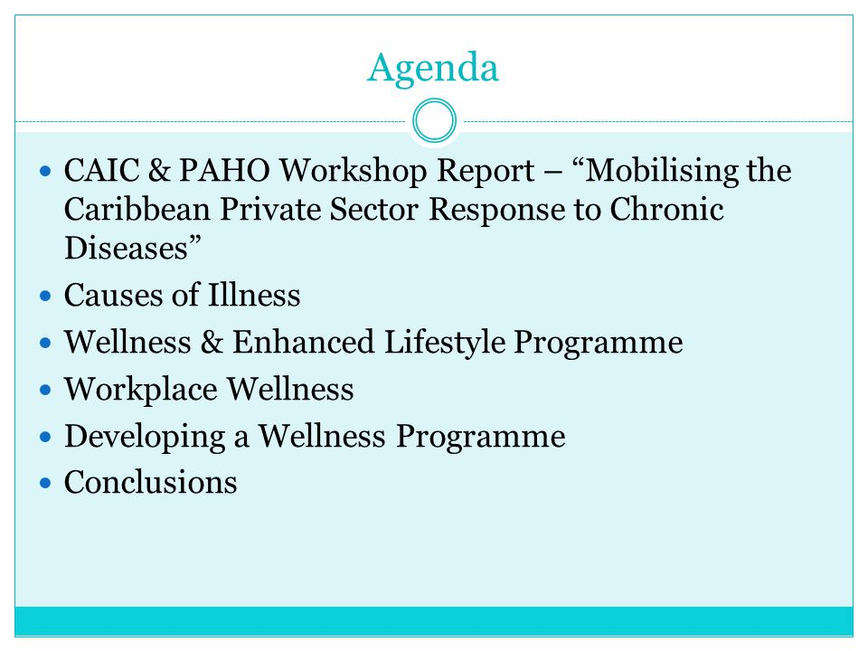 """Agenda CAIC & PAHO Workshop Report – """"Mobilising the Caribbean Private Sector Response to Chronic Diseases"""" Causes of Illness Wellness & Enhanced Life"""