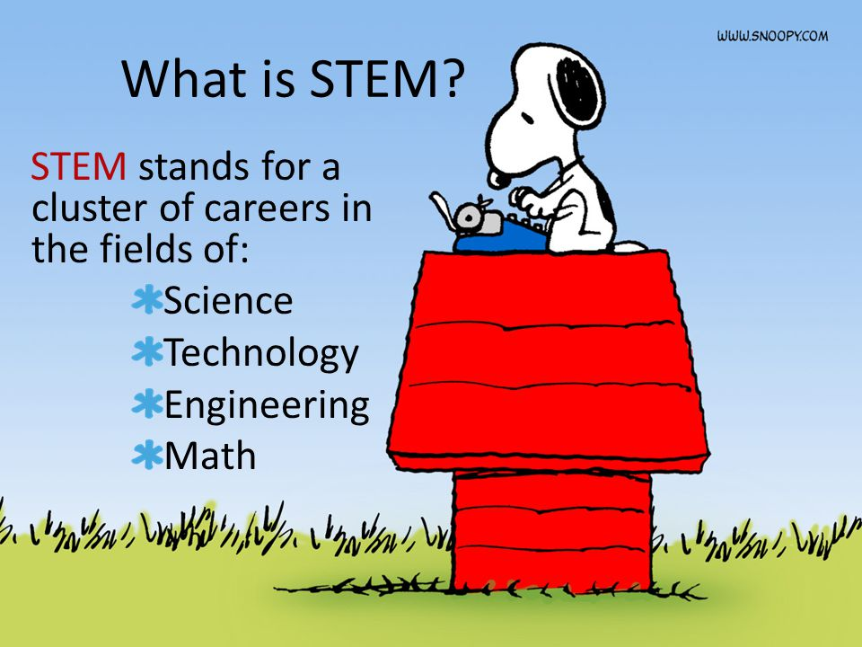 What is STEM? STEM stands for a cluster of careers in the fields of: Science Technology Engineering Math