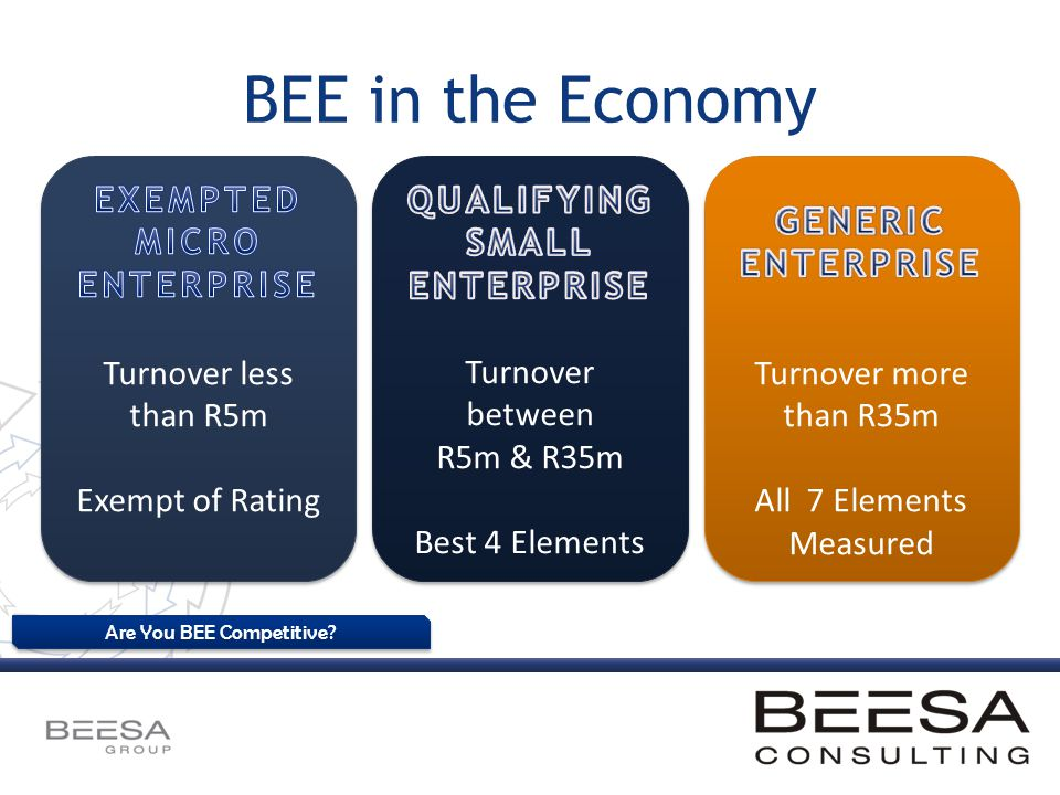 Are You BEE Competitive? BEE in the Economy Turnover less than R5m Exempt of Rating Turnover between R5m & R35m Best 4 Elements Turnover more than R35