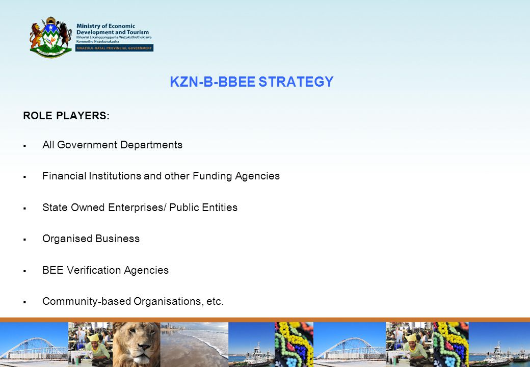 KZN-B-BBEE STRATEGY ROLE PLAYERS :  All Government Departments  Financial Institutions and other Funding Agencies  State Owned Enterprises/ Public Entities  Organised Business  BEE Verification Agencies  Community-based Organisations, etc.