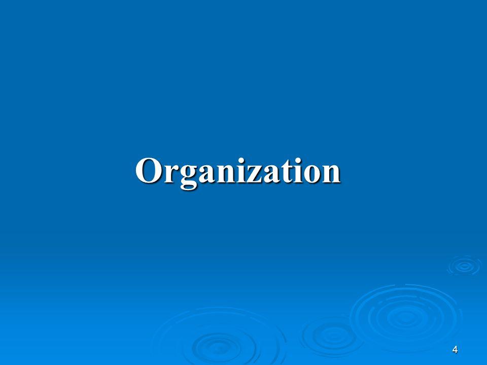4 Organization