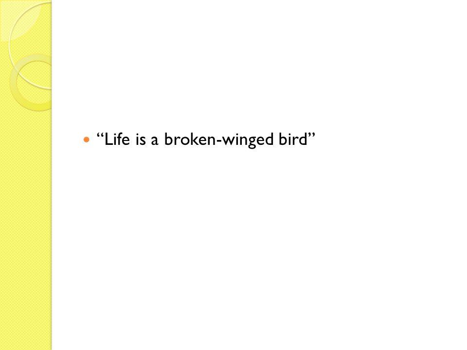 Life is a broken-winged bird