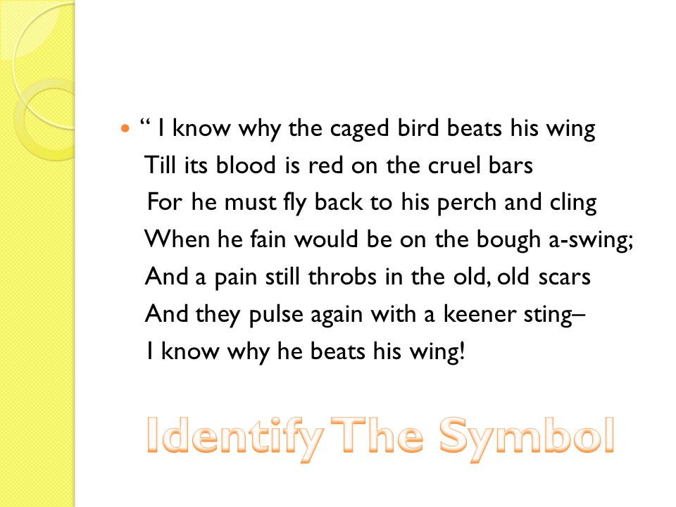 I know why the caged bird beats his wing Till its blood is red on the cruel bars For he must fly back to his perch and cling When he fain would be on the bough a-swing; And a pain still throbs in the old, old scars And they pulse again with a keener sting– I know why he beats his wing!