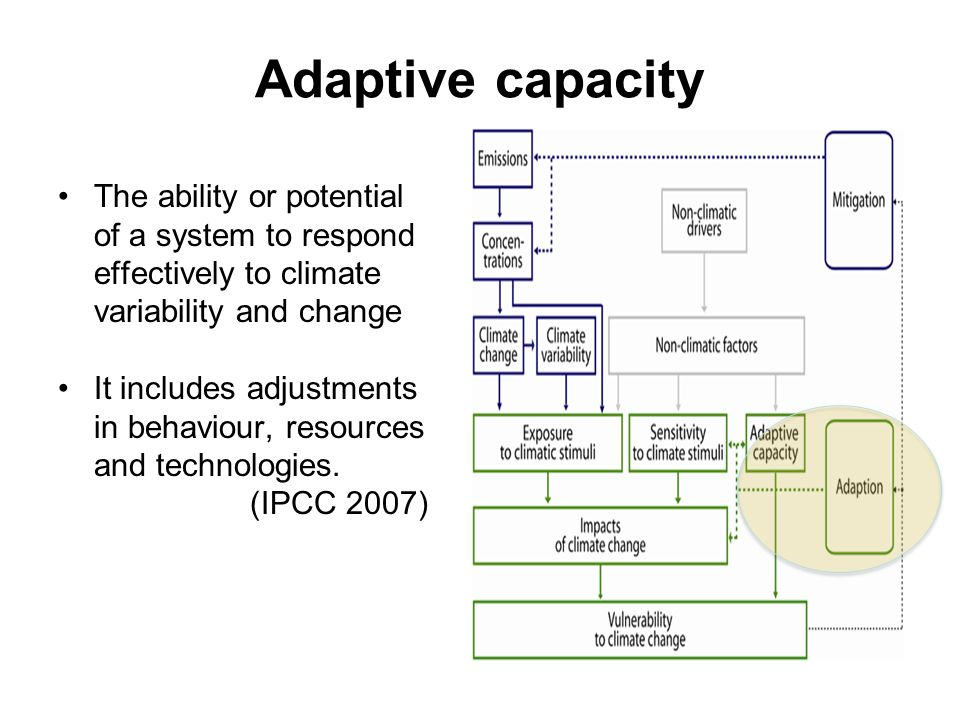 Adaptive capacity The ability or potential of a system to respond effectively to climate variability and change It includes adjustments in behaviour, resources and technologies.