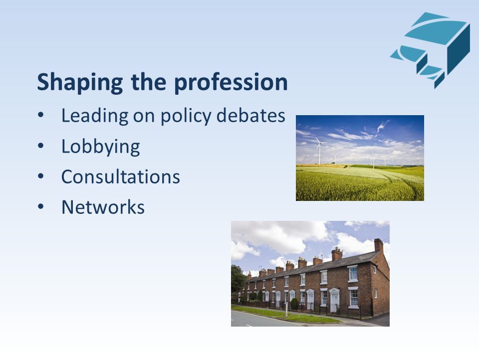 Shaping the profession Leading on policy debates Lobbying Consultations Networks