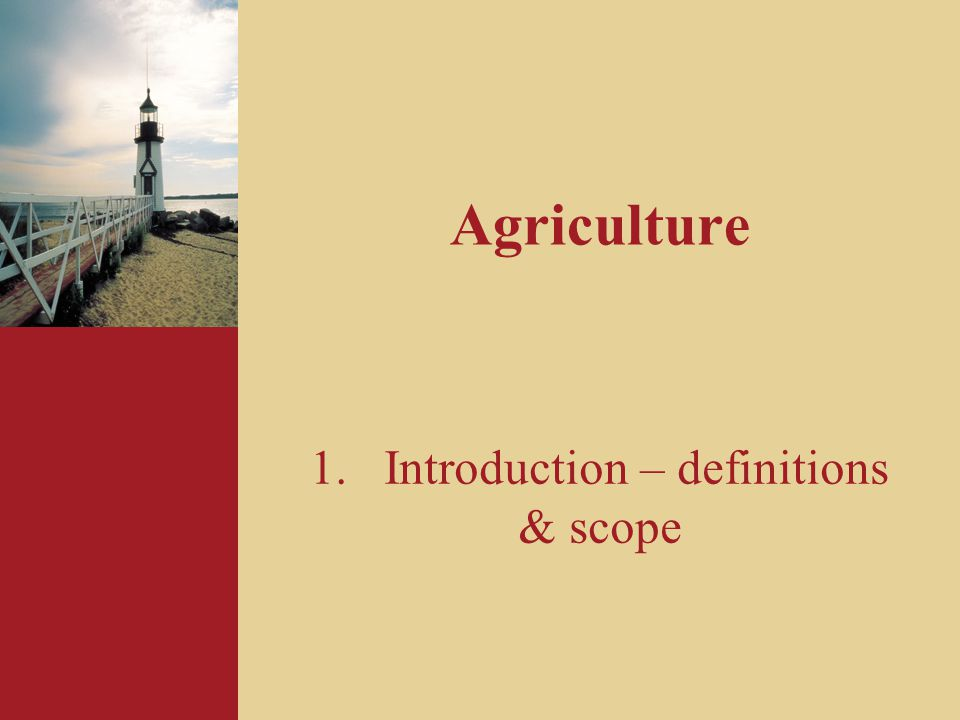 4 Definitions and scope Biological Assets Agricultural Produce at point of harvest Government Grants Farm Land & Buildings Intangible Assets Agricultural Produce after point of harvest Scope of IAS 41