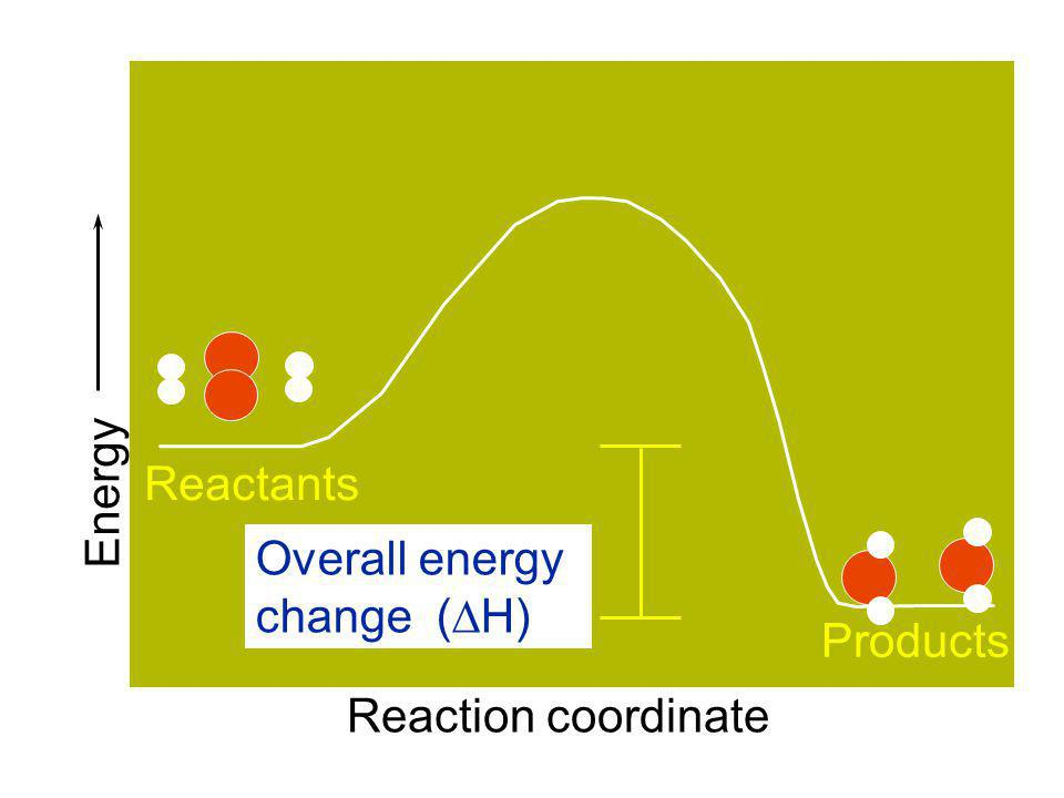 What is an exothermic reaction? A reaction that gives off or releases heat. Since...  H rxn = H products - H reactants then  H rxn will be a negativ