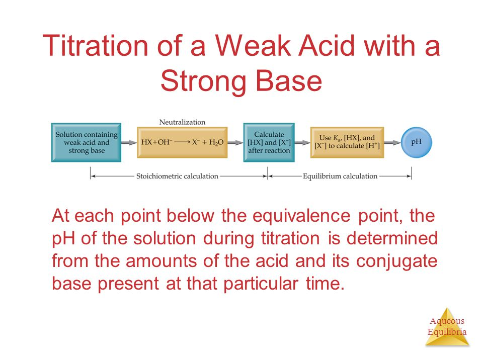 Aqueous Equilibria Titration of a Weak Acid with a Strong Base At each point below the equivalence point, the pH of the solution during titration is determined from the amounts of the acid and its conjugate base present at that particular time.