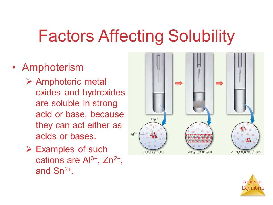 Aqueous Equilibria Factors Affecting Solubility Amphoterism  Amphoteric metal oxides and hydroxides are soluble in strong acid or base, because they